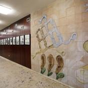 vestibul1